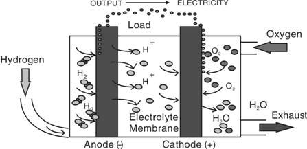燃料电池的工作原理